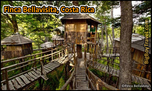 best treehouse hotels in the world top 10 finca bellavisita costa rica - Treehouse Masters Tree Houses Inside