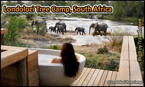 Coolest Hotels In The World, Top Ten, Londolozi Tree Camp South Africa